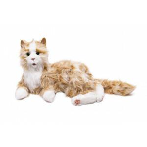 Interaktive Katze Orange